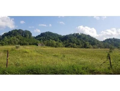 Residential Lots & Land For Sale: Stanley Valley
