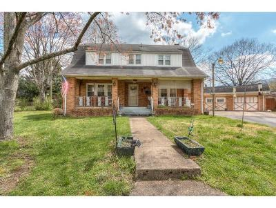 Erwin Single Family Home For Sale: 640 Holston Pl.