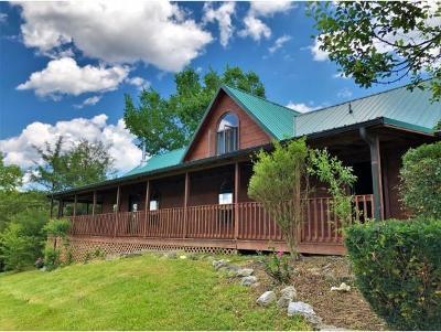 Newport Single Family Home For Sale: 487 Mountain Lake Lane