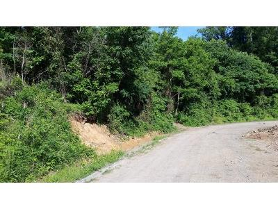 Residential Lots & Land For Sale: Luther Villa Rd