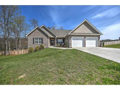 Piney Flats Single Family Home For Sale: 2037 Allison Heights Rd.