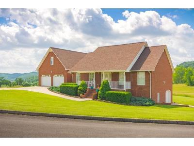 Hawkins County Single Family Home For Sale: 160 Walnut Grove Drive