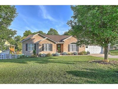 Kingsport Single Family Home For Sale: 109 Silverleaf Ct.