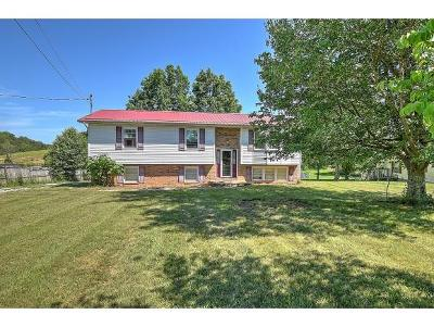 Jonesborough TN Single Family Home For Sale: $129,900