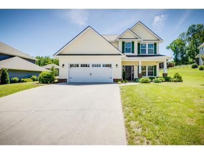 Kingsport Single Family Home For Sale: 2617 Bridgeforth Crossing