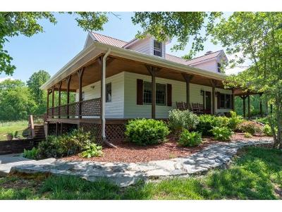 Johnson City Single Family Home For Sale: 131 Laurels Road