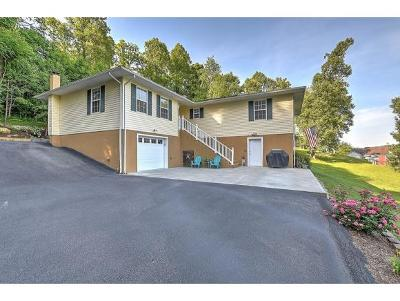 Bluff City Single Family Home For Sale: 120 Elizabeth Ann Circle