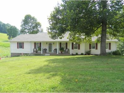 Bluff City Single Family Home For Sale: 436 Parks Worley