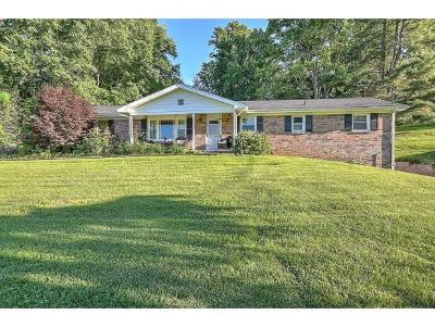 Bristol Single Family Home For Sale: 400 Booher Rd