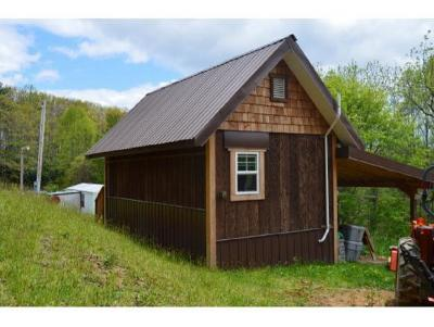 Roan Mountain TN Single Family Home For Sale: $74,900