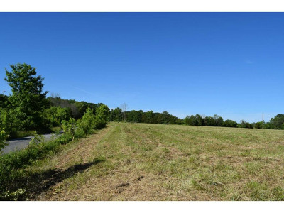 Greene County Residential Lots & Land For Sale: TBD Woodlawn Road