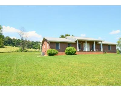 Piney Flats Single Family Home For Sale: 1000 N Pickens Bridge Road