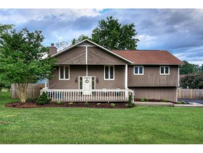 Gray Single Family Home For Sale: 103 Blazerview Rd
