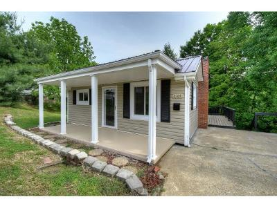 Kingsport Single Family Home For Sale: 2104 Westmoreland Avenue