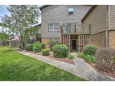 Johnson City Condo/Townhouse For Sale: 514 Pilgrim Court #B