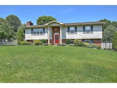 Johnson City Single Family Home For Sale: 2209 Lakeland Dr