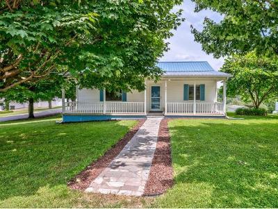 Greeneville Single Family Home For Sale: 201 Sunrise Drive