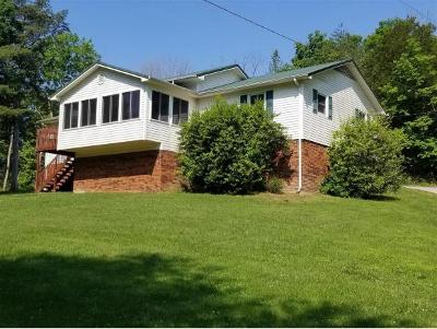 Rogersville Single Family Home For Sale: 1407 Hwy 70 North