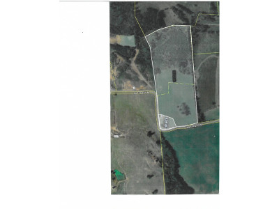 Greene County Residential Lots & Land For Sale: 170 Perry Davis Rd
