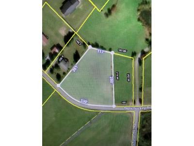 Greene County Residential Lots & Land For Sale: Nolichuckey Rd