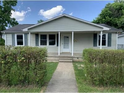 Johnson City Single Family Home For Sale: 1501 E Millard Street