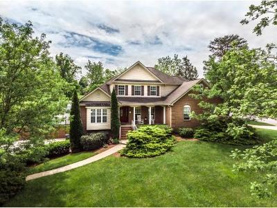 Greeneville TN Single Family Home For Sale: $429,900