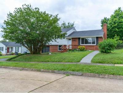 Kingsport Single Family Home For Sale: 1333 Post St