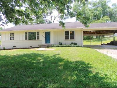 Kingsport Single Family Home For Sale: 360 Elmhurst Drive