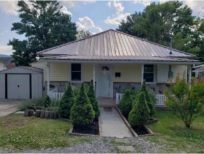 Kingsport Single Family Home For Sale: 629 Howard Street