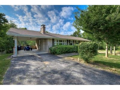 Kingsport Single Family Home For Sale: 129 Green Hills Dr