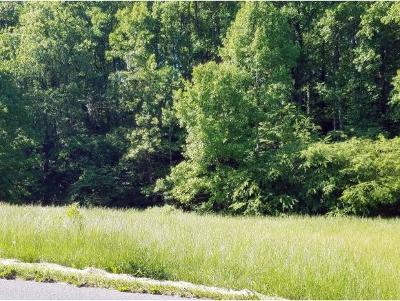 Washington-Tn County Residential Lots & Land For Sale: 179-183 Hall Rd