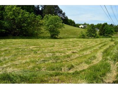 Washington-Tn County Residential Lots & Land For Sale: 185-187 Hall Rd