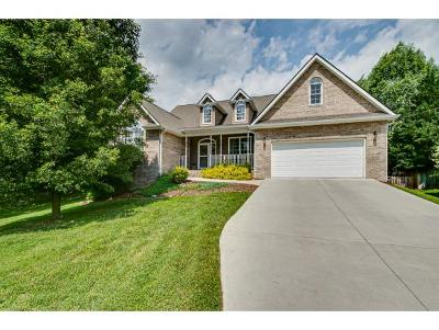 Johnson City Single Family Home For Sale: 6 Estate Ct
