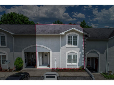 Kingsport Condo/Townhouse For Sale: 813 Fain Avenue #6