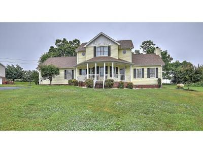 Johnson City Single Family Home For Sale: 795 Carroll Creek Road