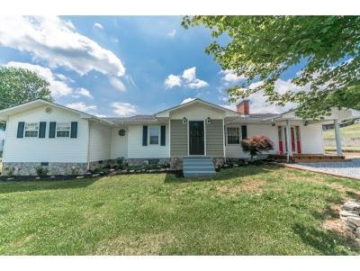 Elizabethton Single Family Home For Sale: 139 Lynnwood Avenue