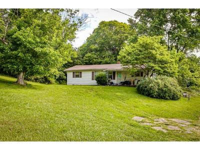 Mount Carmel Single Family Home For Sale: 114 Seminole Drive