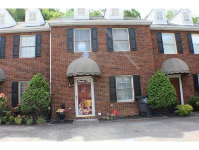 Kingsport Condo/Townhouse For Sale: 460 Eastley Ct. #2