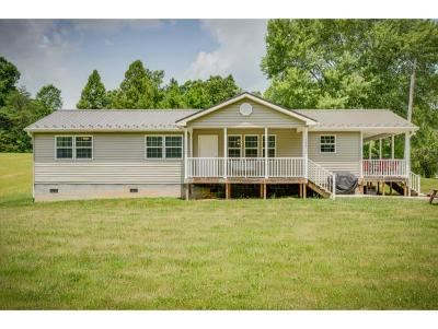 Bluff City Single Family Home For Sale: 1175 Walnut Grove Road