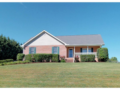 Greeneville Single Family Home For Sale: 245 Walnut Grove Road