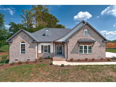 Jonesborough Single Family Home For Sale: 8 Planted Stone Ct