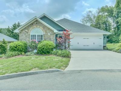 Gray Single Family Home For Sale: 79 Hiddenbrook Lane
