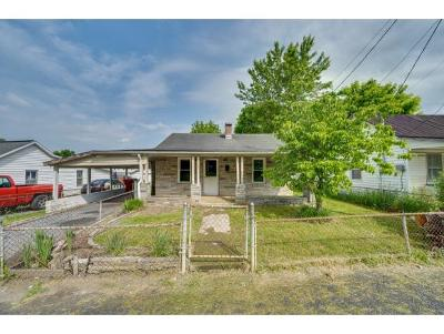 Johnson City Single Family Home For Sale: 1311 Orleans Street