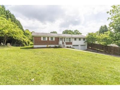 Single Family Home For Sale: 220 Crockett St