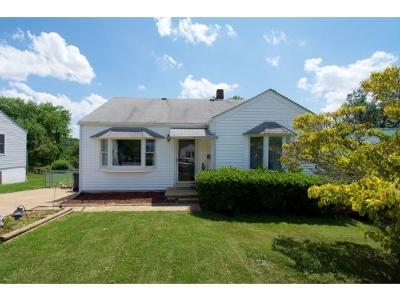 Kingsport Single Family Home For Sale: 224 Bert St