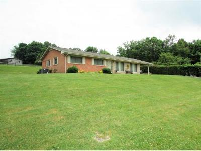 Elizabethton Single Family Home For Sale: 704 Willow Springs Road