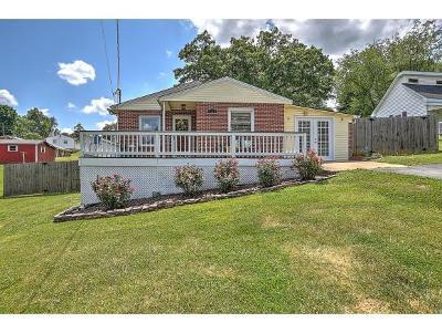 Johnson City Single Family Home For Sale: 121 Royston Street