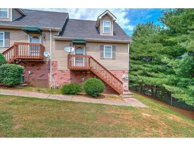Johnson City TN Condo/Townhouse For Sale: $114,900