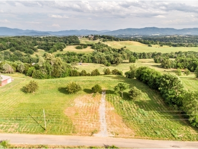 Greene County Residential Lots & Land For Sale: Pigeon Creek Rd.