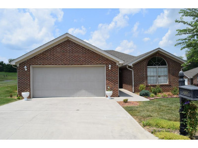 Hawkins County Condo/Townhouse For Sale: 302 Bowie Court #302